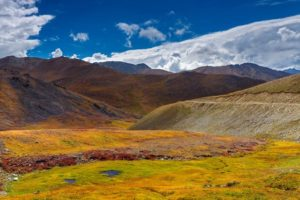 colorful deosai1