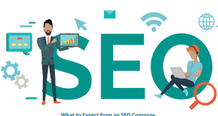Where to Buy SEO Services